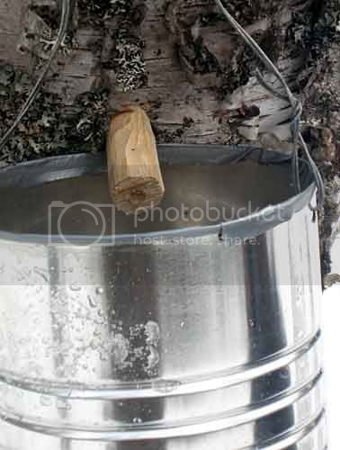 Homemade wood spout